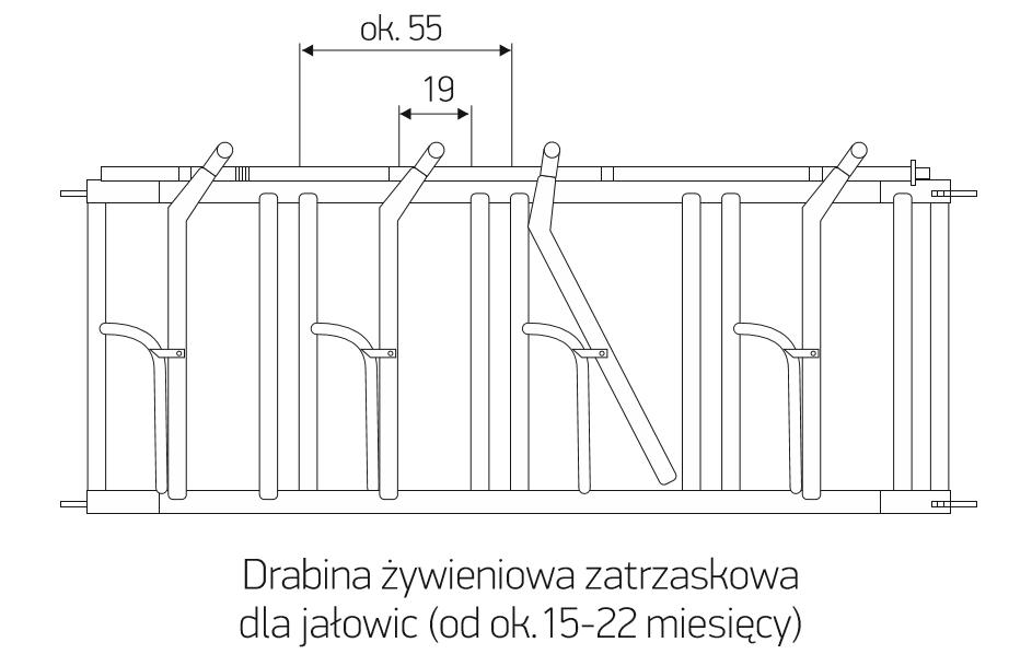 dz_15-22
