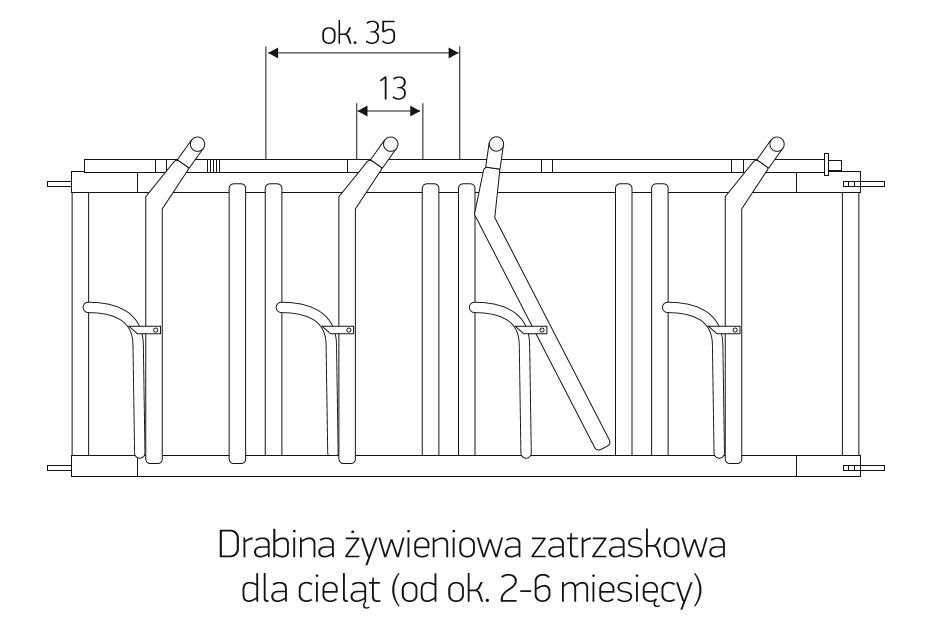 dz_2-6