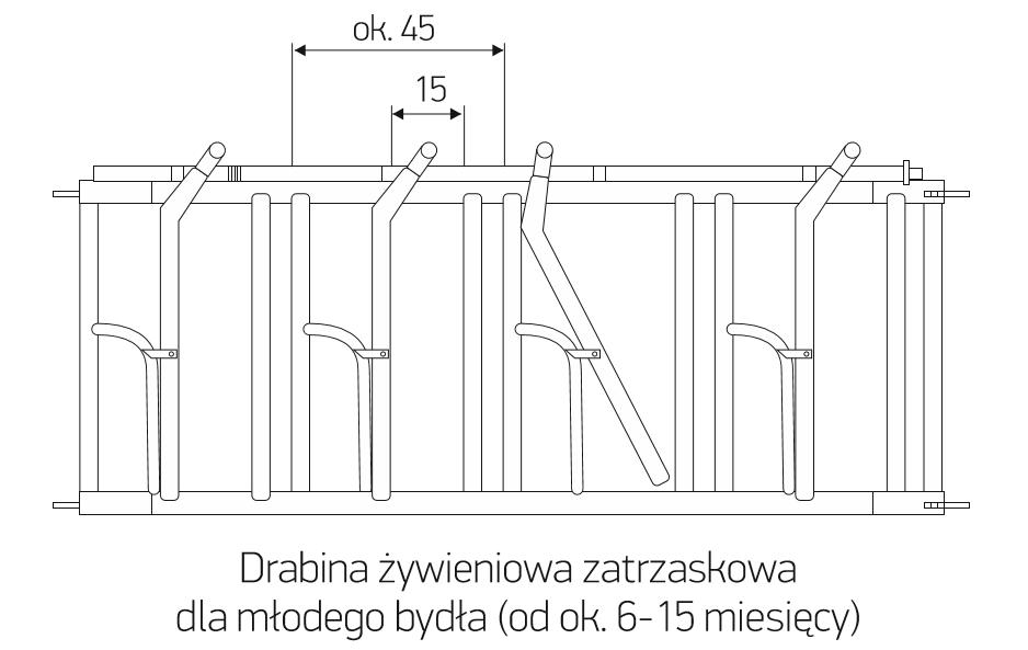 dz_6-15