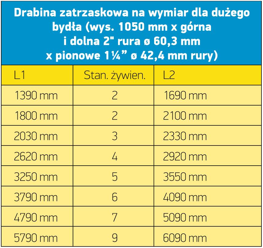 dz_nawymiar_tabela_2