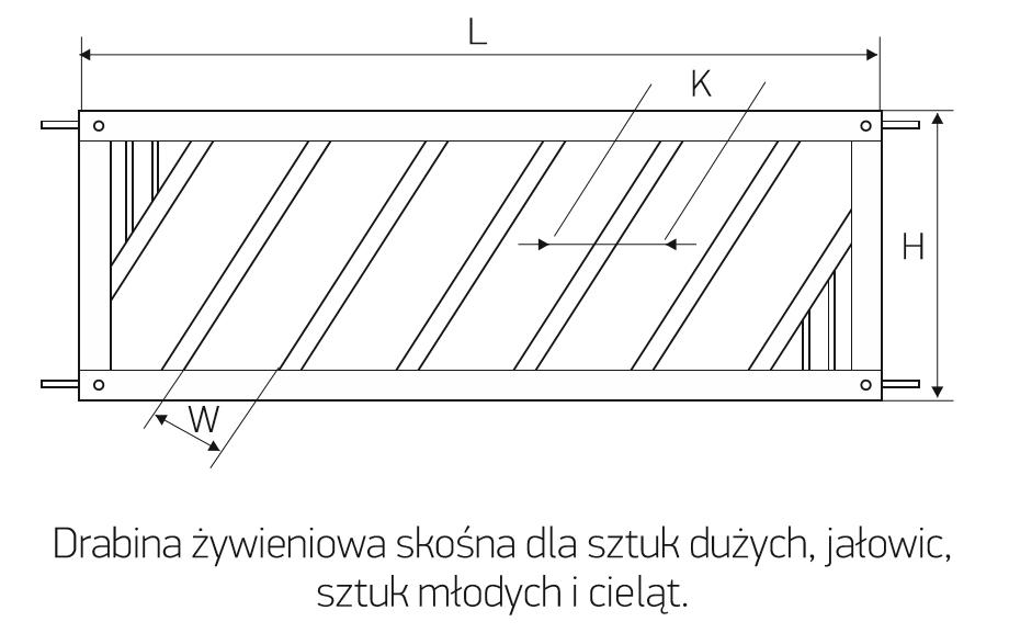 dz_skosna